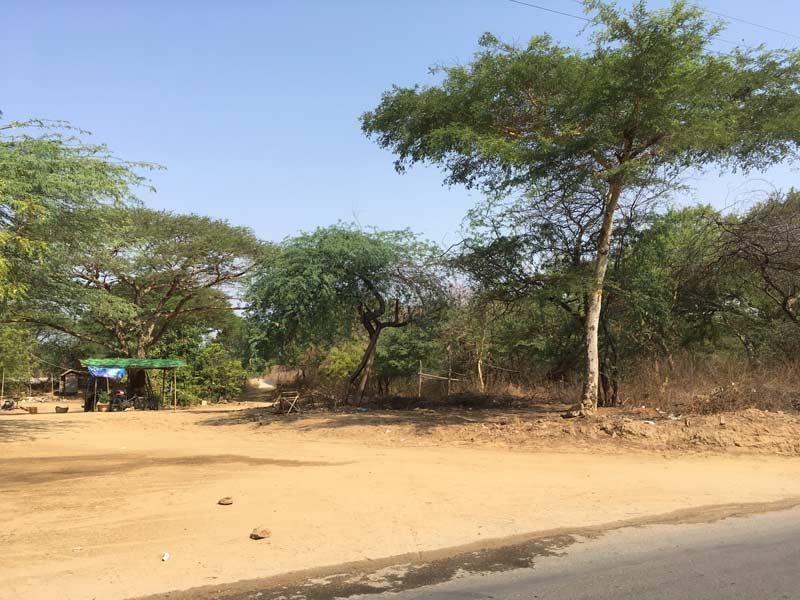 マヌーハ寺院までの道路