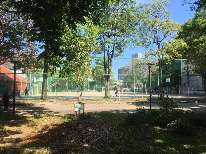テニスコートへの道