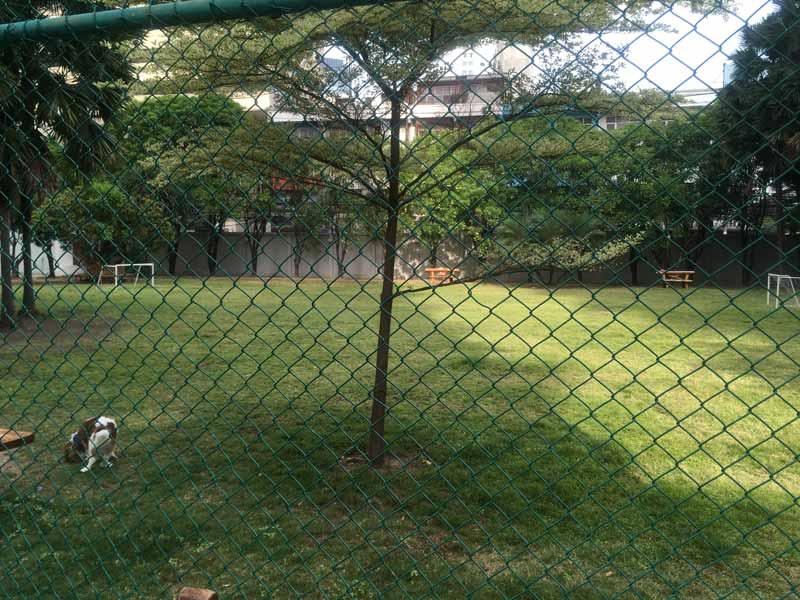 プラサーンミットタニータワーのテニスコート