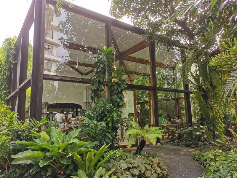 トンローのカフェPatom Organic Living